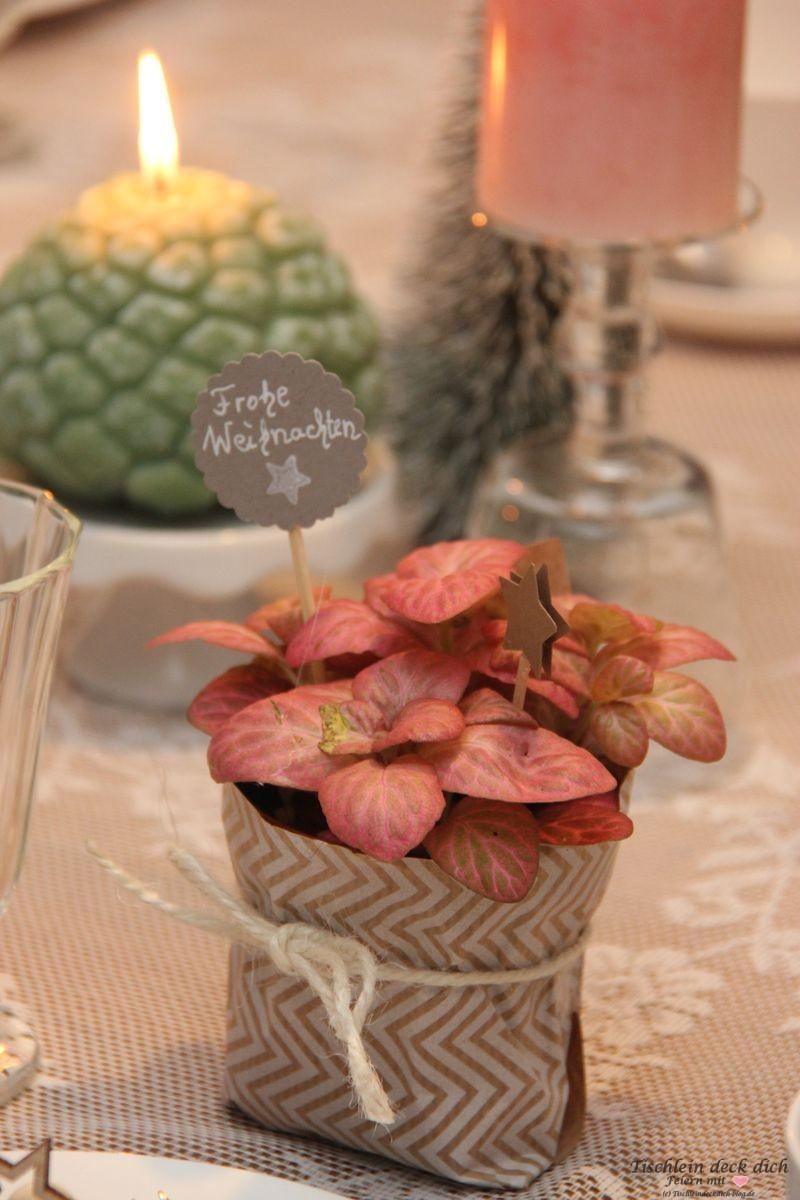 Apricot Tischdeko Gastgeschenk Tischlein Deck Dich